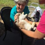Senior Woman Petting Bunny Lil Bit of Living Petting Zoo Senior Living The Cove at Tavares Village